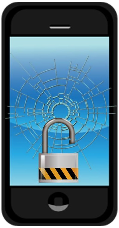 Mobile Commerce and Security Issues