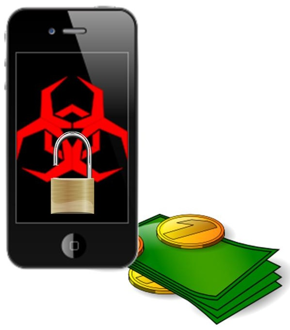 Mobile Commerce Security Issues